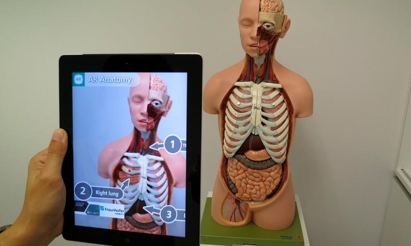 AR Anatomy