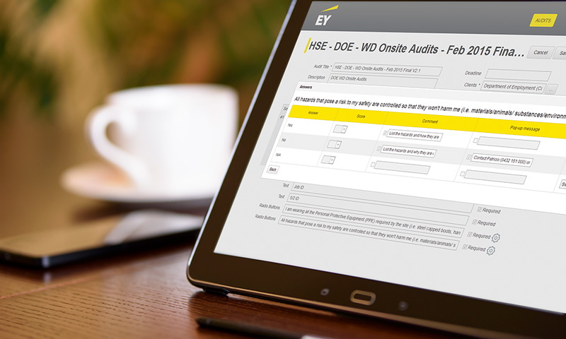 Enterprise Apps: EY tablet application